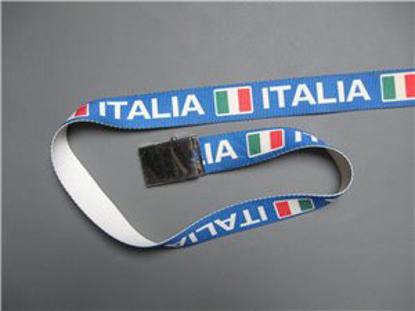 Picture of belt ITALIA